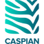 Caspian icon
