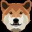 DogeCash icon